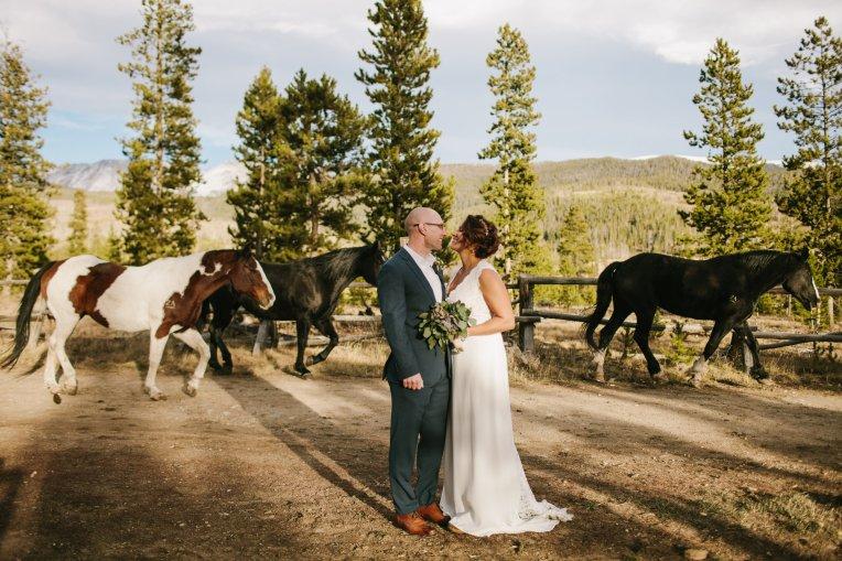 View More: http://taylercarlisle.pass.us/johnsonwedding